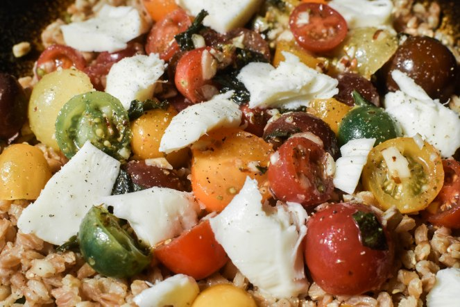 salads (4 of 14)